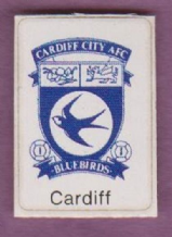 Cardiff City Badge (B)